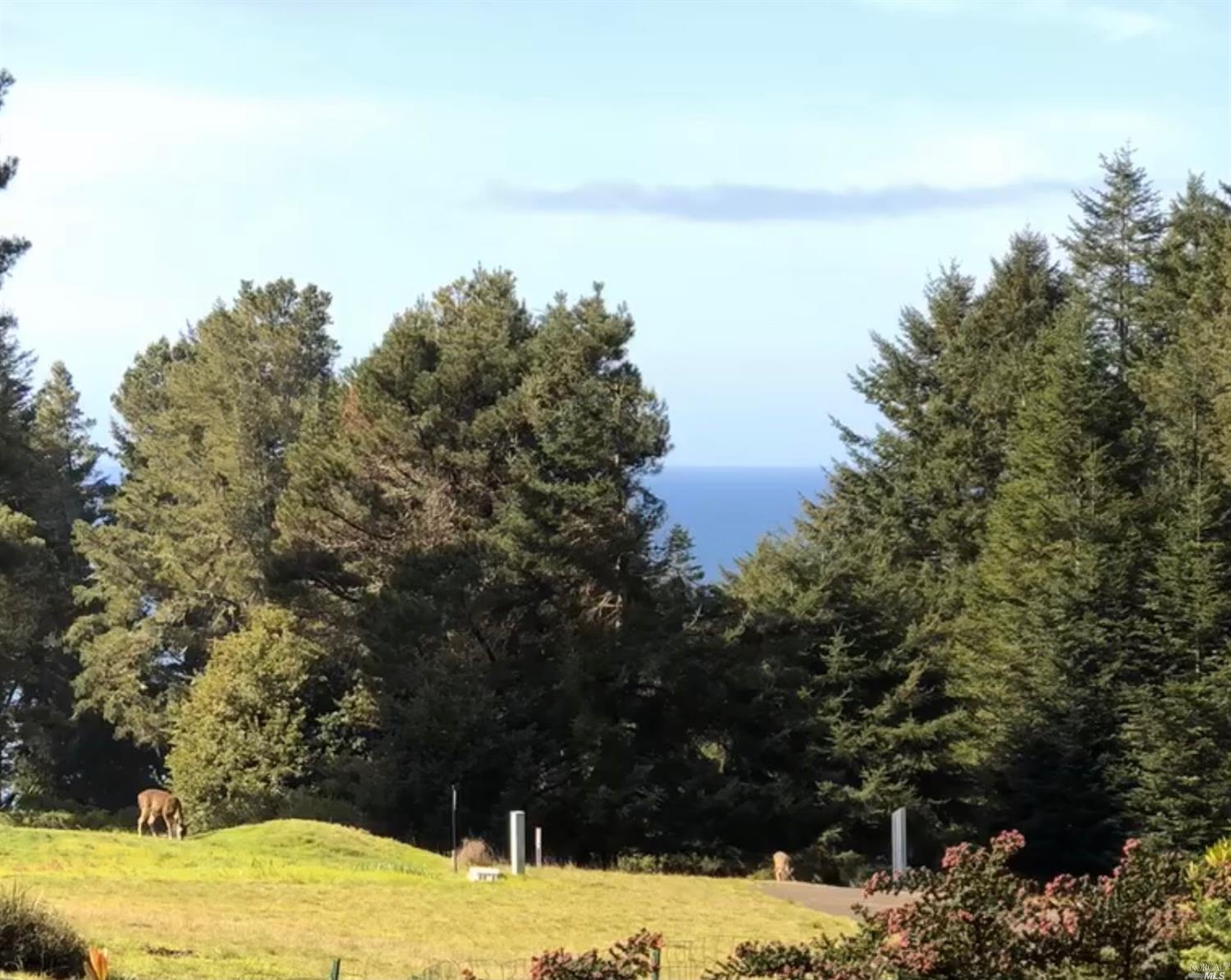 Listing 321089688 : 35300  Fly Cloud Road, The Sea Ranch, CA, 95497  (photo 2)